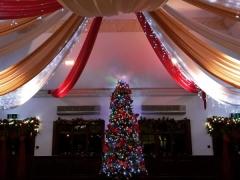 Christmas tree and room drapes