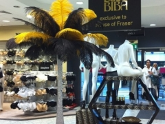 black-and-gold-feathers