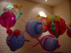 balloonfishes