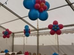 balloonflowerswildberryandteal-copy