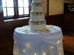 starlight-cake-table-skirt-Woolston